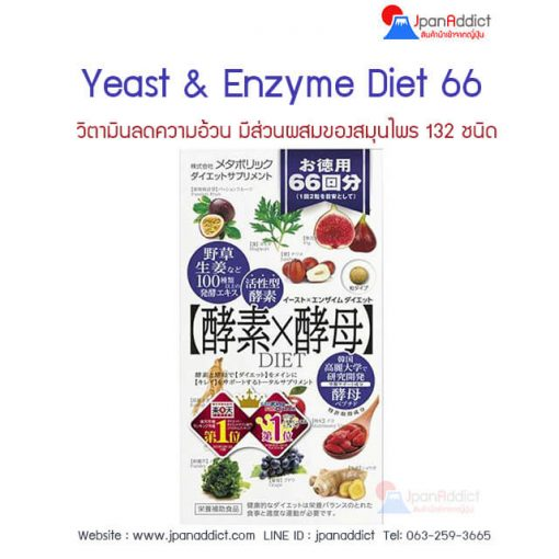Yeast and Enzyme Diet