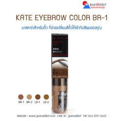KATE EYEBROW COLOR BR-1