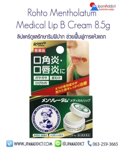 Rohto Mentholatum Medical Lip