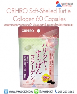 ORIHIRO-Soft-Shelled-Turtle