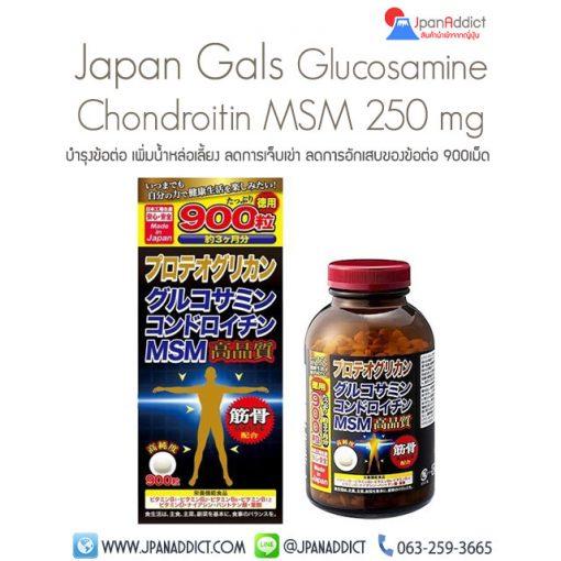 Glucosamine Chondroitin MSM 250mg กลูโคซามิน