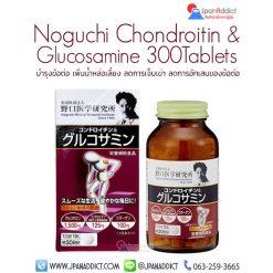 Noguchi Chondroitin + Glucosamine